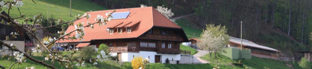 Schmalzenhof