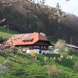 Schmalzenhof Hofbild